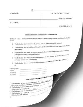 Order Setting Conditions Of Release legal pleading template