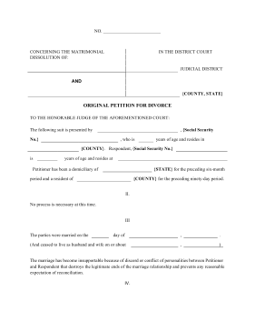 Petition Of Divorce Legal Pleading Template  Example Of Divorce Papers